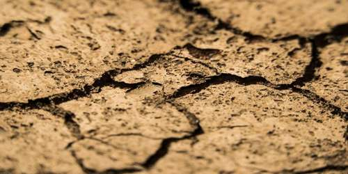 मिट्टी की महिमा पर कविता